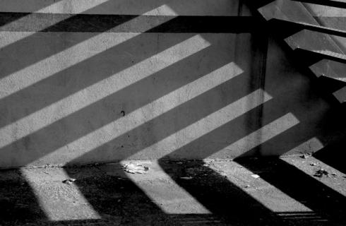 shadow66